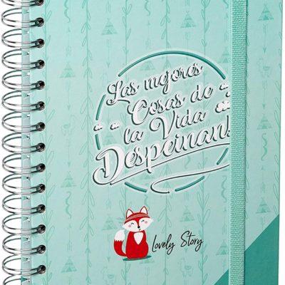 """Cuaderno A5 """"LAS MEJORES COSAS DE LA VIDA DESPEINAN"""""""